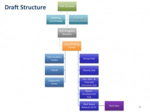 draft structure